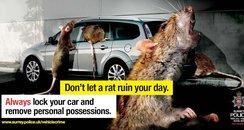 Surrey Police's 'Rats' campaign