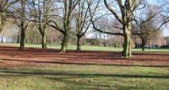 Watford parks regeneration...