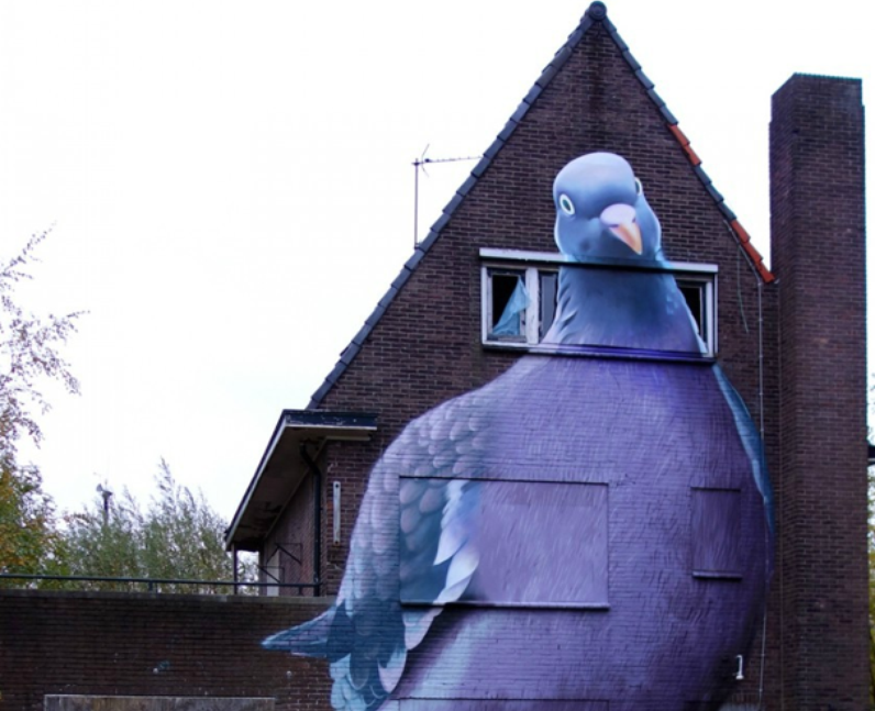 A giant pigeon mural on a house