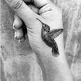 black and white hummingbird tattoo on a hand