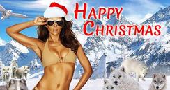Liz Hurley Christmas Card