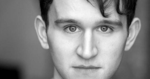 Harry Melling Dudley Dursley