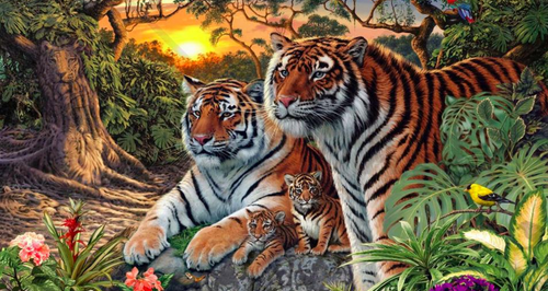 tiger photo puzzle illusion