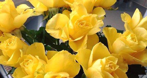 aldi worker kind gesture flowers
