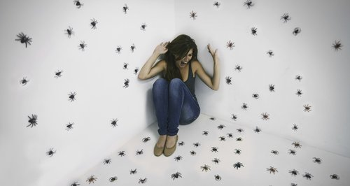 Woman scared of spiders in a room