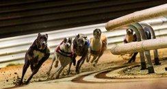 Peterborough Greyhound Stadium