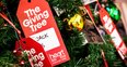 The Giving Tree 2016