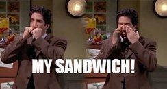 Ross Geller Moist Maker Sandwich