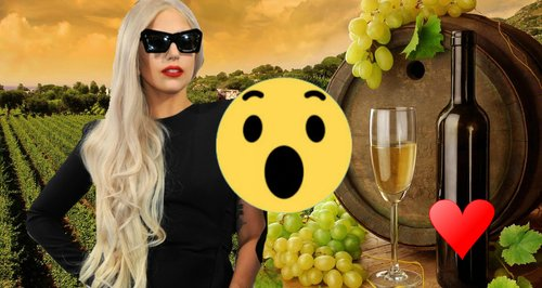 Lady gaga wines